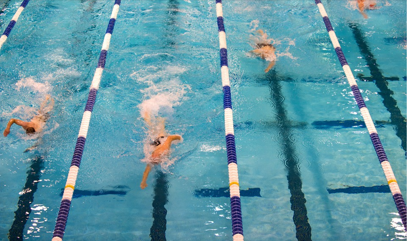 swimmers in lanes